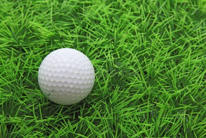 Golf ball on green grass royalty free stock photo