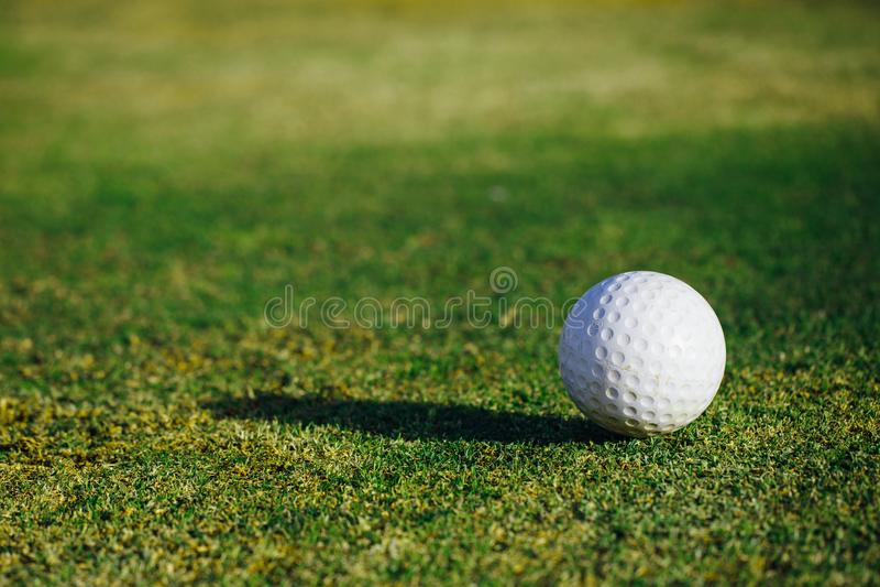 Golf ball on green grass. Closeup view royalty free stock photos