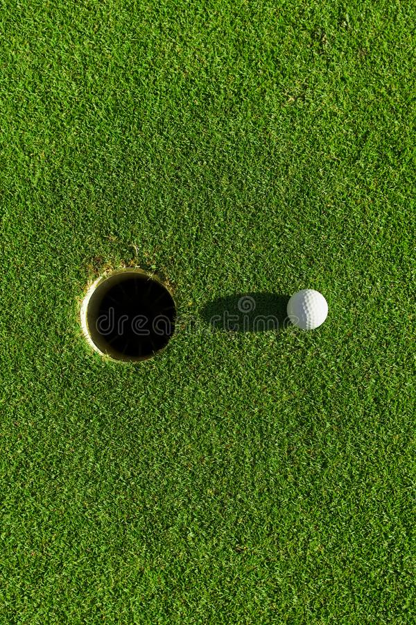 Golf ball on green grass with hole and sunlight. Lawn, object, cut, putting, equipment, playing, landscape, empty, point, natural, ground, lifestyle, shot stock photo
