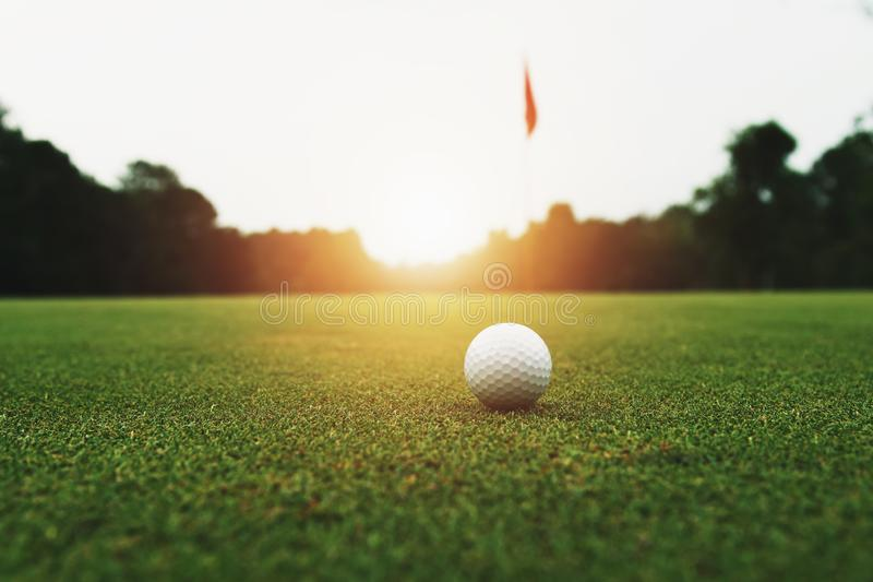 Golf ball on green grass with hole and sunlight. Lawn, object, cut, putting, equipment, playing, landscape, empty, point, natural, ground, lifestyle, shot royalty free stock photography