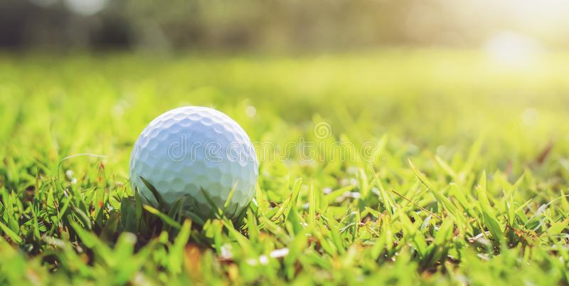 Golf ball on green grass with sunlight. Lawn, object, cut, putting, equipment, playing, landscape, empty, point, natural, ground, lifestyle, shot, hobby, golf royalty free stock photography