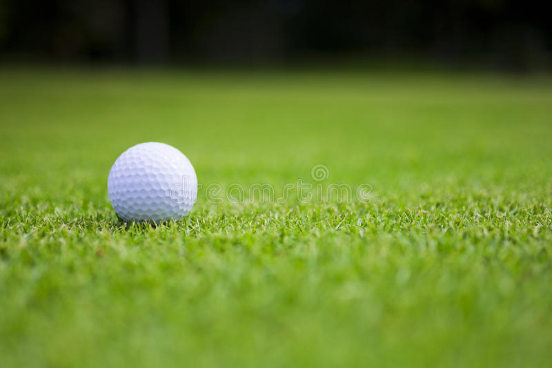Golf ball on green royalty free stock photography