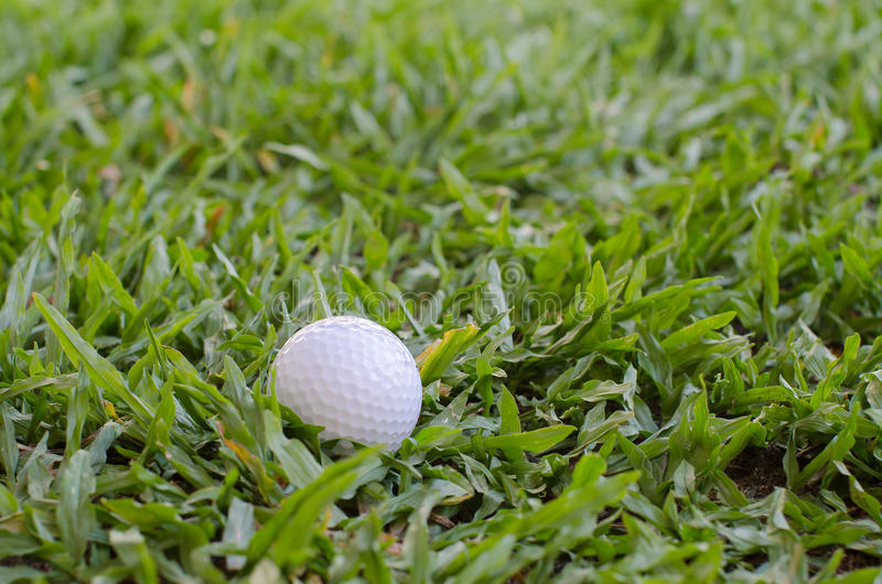 Golf ball on the lawn. Golf course with the ball in front and beautiful nature in the back royalty free stock photo