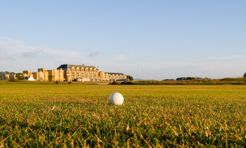 Golf ball lies in fairway. royalty free stock photos
