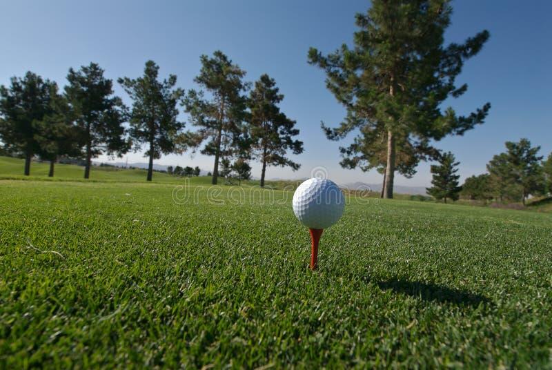 Golf ball on a orange tee stock photography