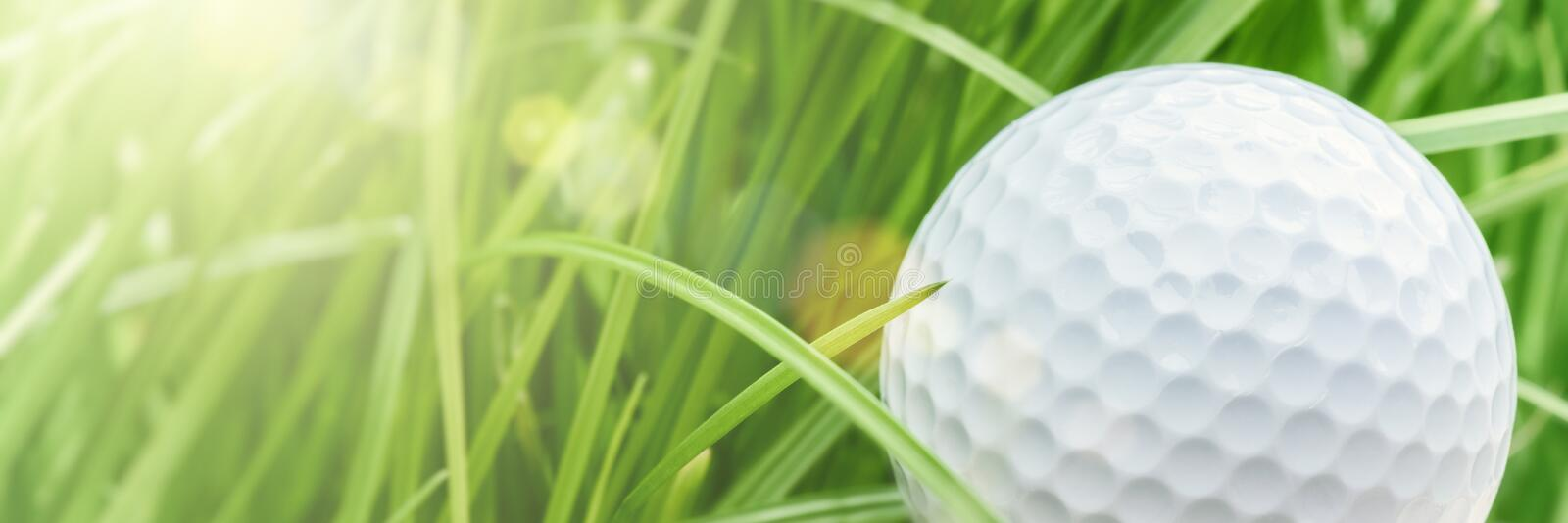 Golf ball over green grass background, closeup. Sport and leisure concept royalty free stock images