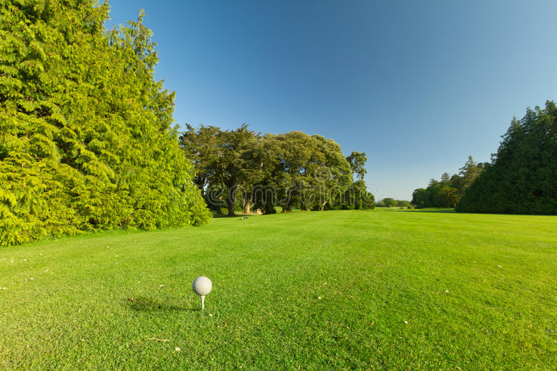 Golf ball on the perfect course royalty free stock photos