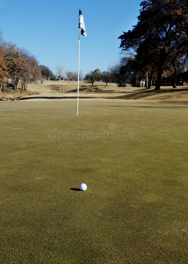 Golf ball and pin on a putting green royalty free stock photos