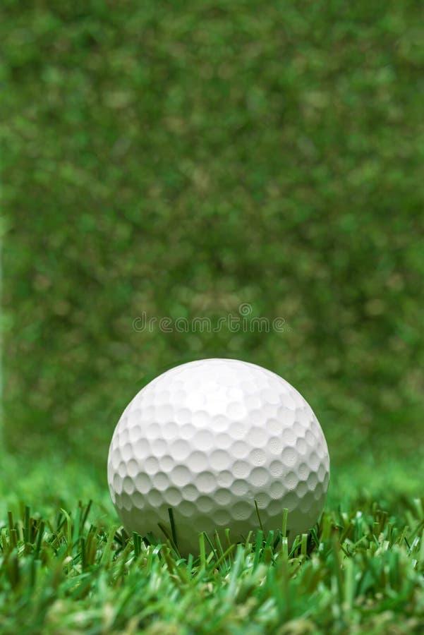Golf ball recumbent on grass. Golf ball recumbent on green grass, close-up stock images