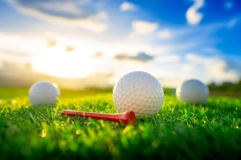 Golf ball and red tee pegs on the green background with sunset. Close up the golf ball and red tee pegs on the green background with sunset royalty free stock photography