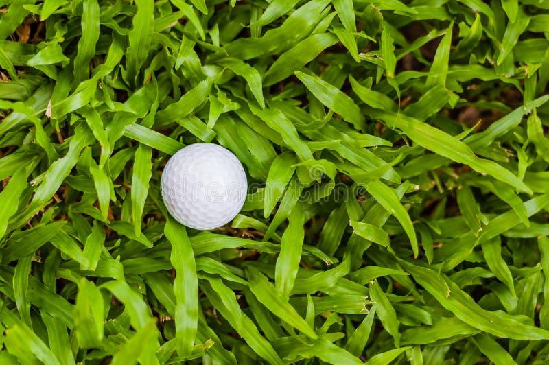 Download Golf ball stock photo. Image of green, macro, ball, white - 31714950