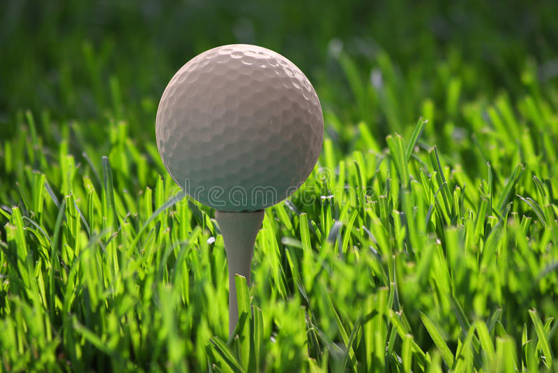 Download Golf ball on tee stock photo. Image of sport, start, challenge - 14211734