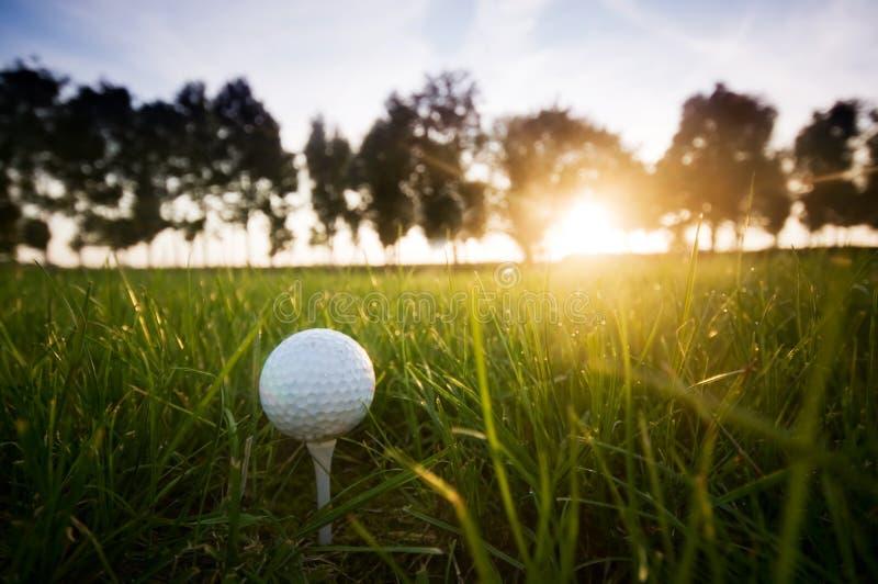 Golf ball on tee. Green grass, sunset sky stock images