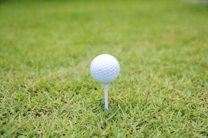 Download Golf ball on tee stock photo. Image of gear, irish, grass - 25086170