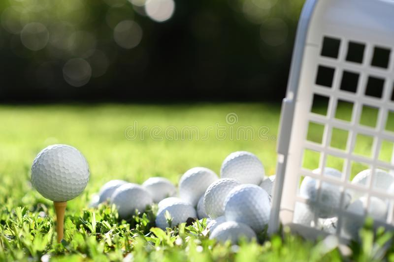 Golf ball on tee and golf balls in basket on green grass royalty free stock photos