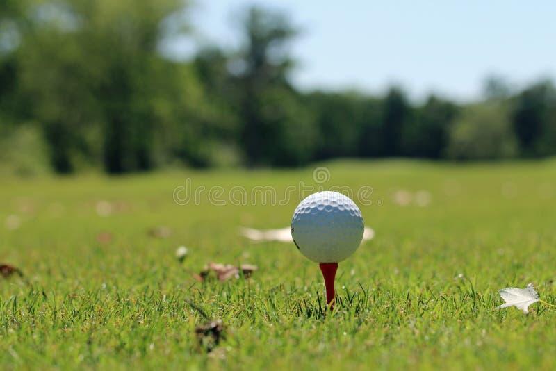 Golf ball on a tee. Golf ball on tee at tee box stock photos