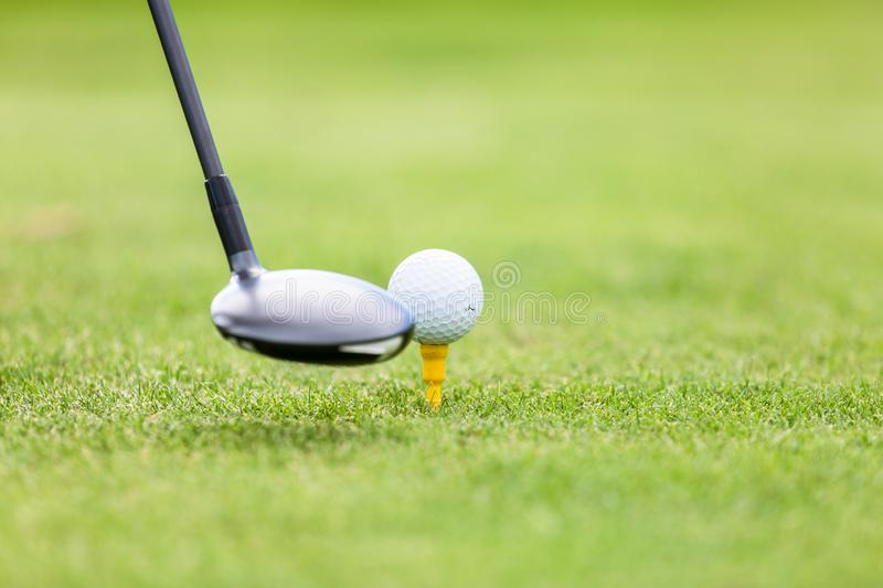 Golf ball on tee in front of driver stock photography