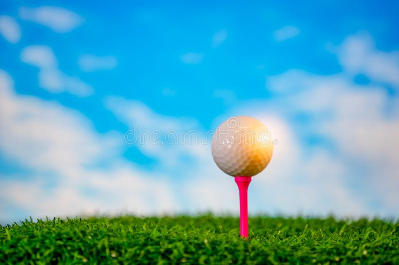 Golf ball on tee on grass golf course stock images