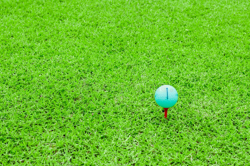 Golf ball on a tee in green grass course stock image