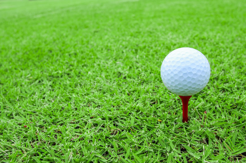 Golf ball on a tee in green grass course stock images