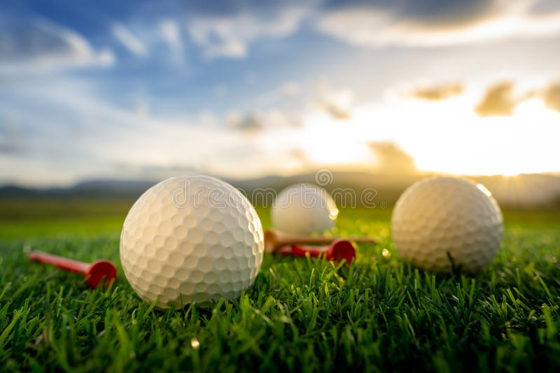The golf ball and tee pegs on the green background with sunset. Close up the golf ball and tee pegs on the green background with sunset royalty free stock photos