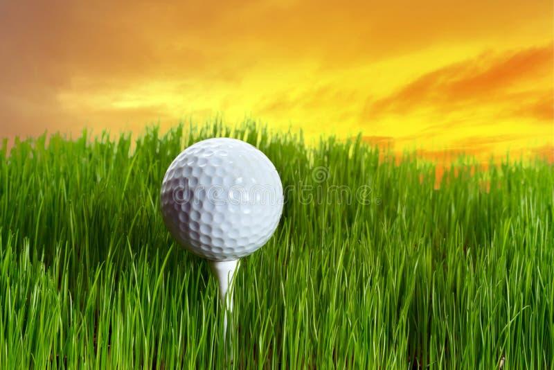 Golf ball on tee at sunset stock image