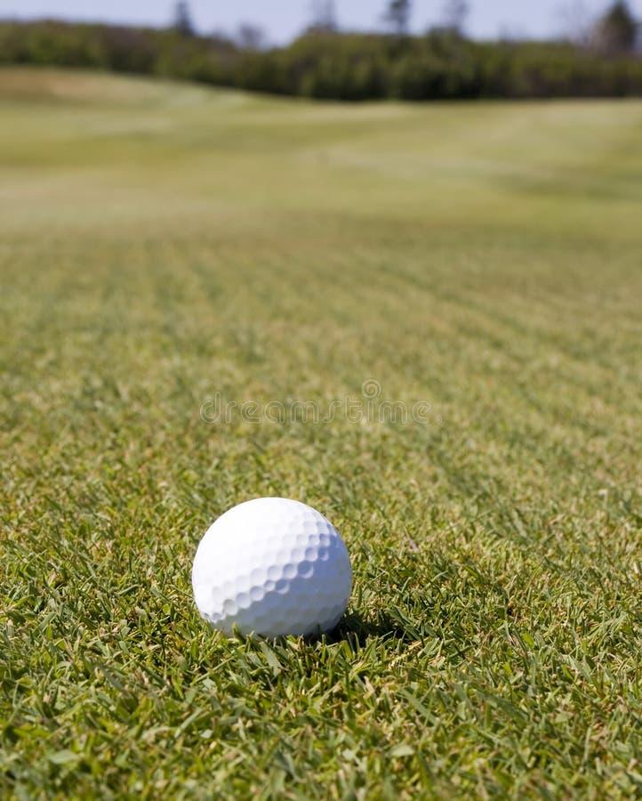 Golf Ball Waits Stock Photography