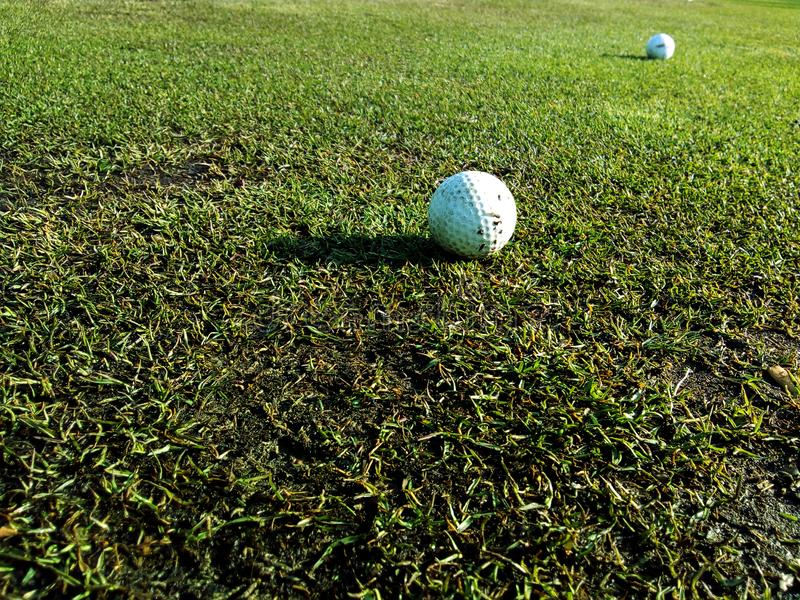 Golf Balls On The Grass royalty free stock image