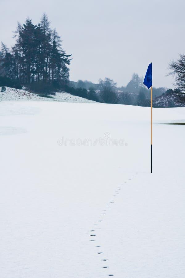 Golf a bandeira na neve com as trilhas que conduzem a ela fotos de stock