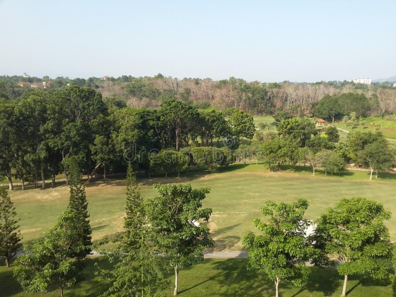 golf calme de vert de paysage de panorama images libres de droits