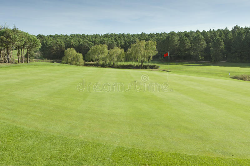 Download Golf Club stock image. Image of golf, play, nature, golfing - 20122337