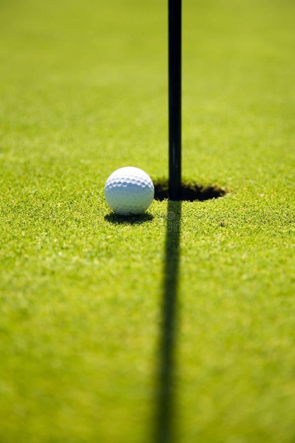 golf club obrazy royalty free