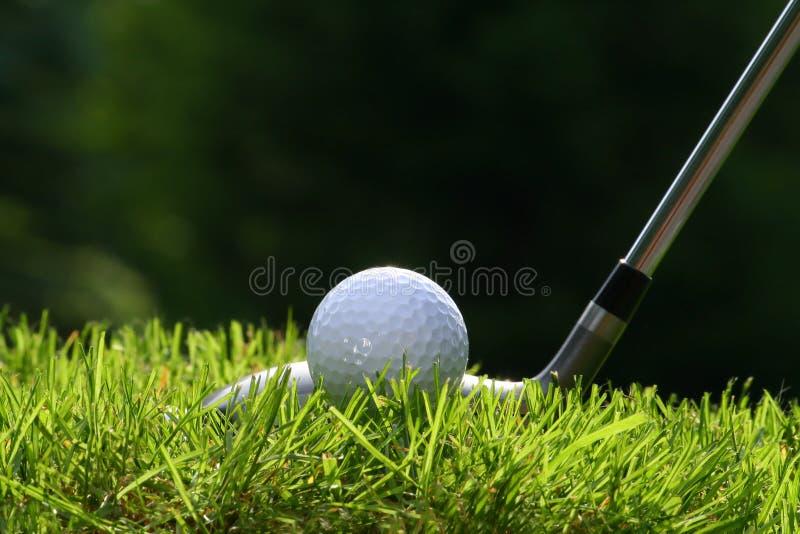 Golf club with ball stock photos