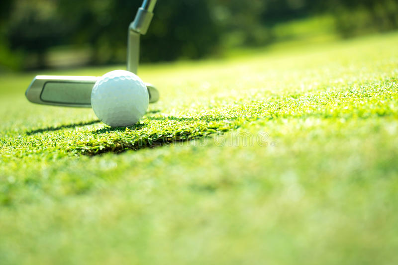 Golf. Club and ball in grass royalty free stock photography