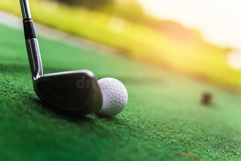 Golf club and ball in green grass. Golf club and ball in green grass royalty free stock photos