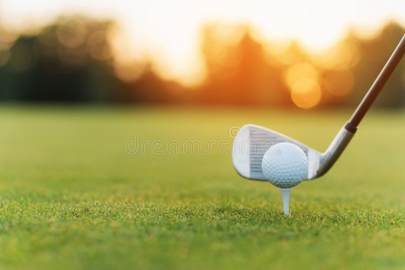 The golf club behind the golf ball on the stand. Against the background of grass and sunset stock images
