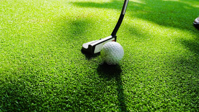 Golf ball with golf club. Golf club with golf  ball in green grass and sunny royalty free stock images