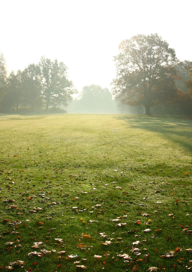Free Golf Course Royalty Free Stock Photos - 11651358