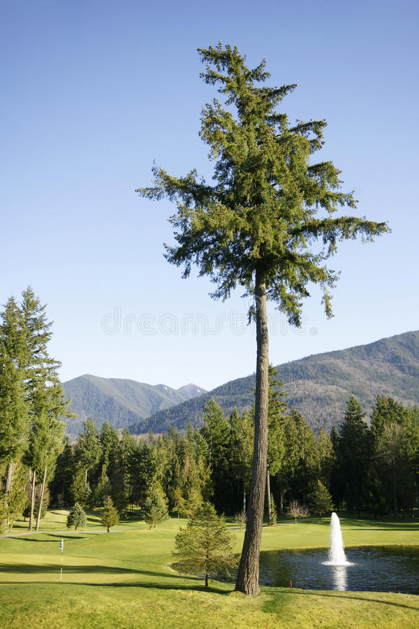 Download Golf Course stock image. Image of fountain, flag, canada - 13107795