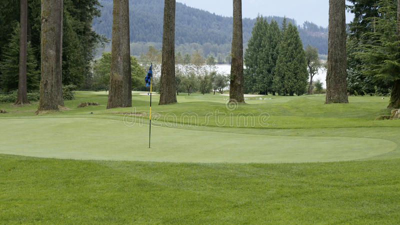 Download Golf Course stock image. Image of green, harrison, course - 16088515