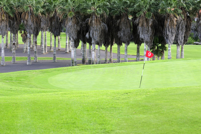 Download Golf Course Royalty Free Stock Image - Image: 20115336