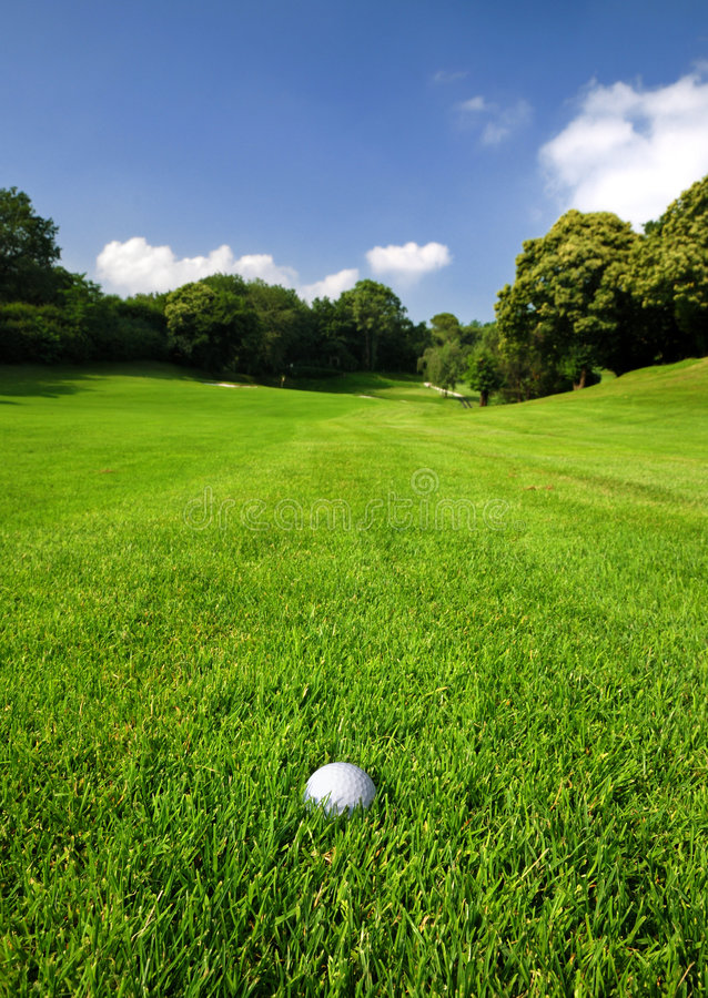 Free Golf Course Royalty Free Stock Photography - 5531967