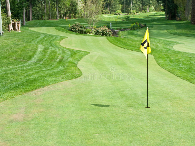 Download Golf course stock photo. Image of fairway, nature, sport - 8645214