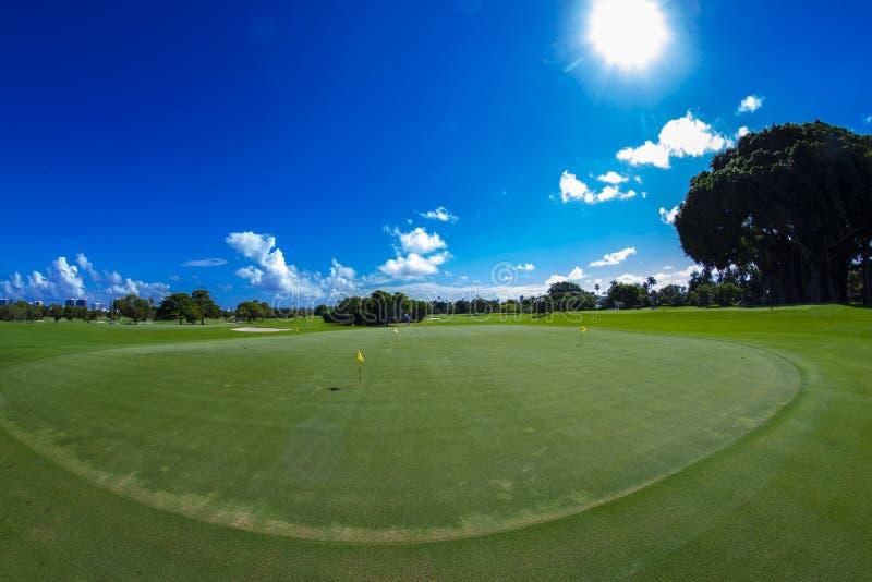 Golf Course. Beauiful Sunny Green Colorful Miami Golf Course. USA stock photos