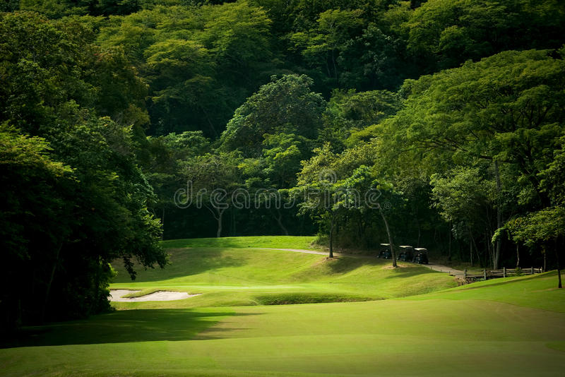 Download Golf Course Fairway At Tropical Resort Stock Photo - Image: 12112278