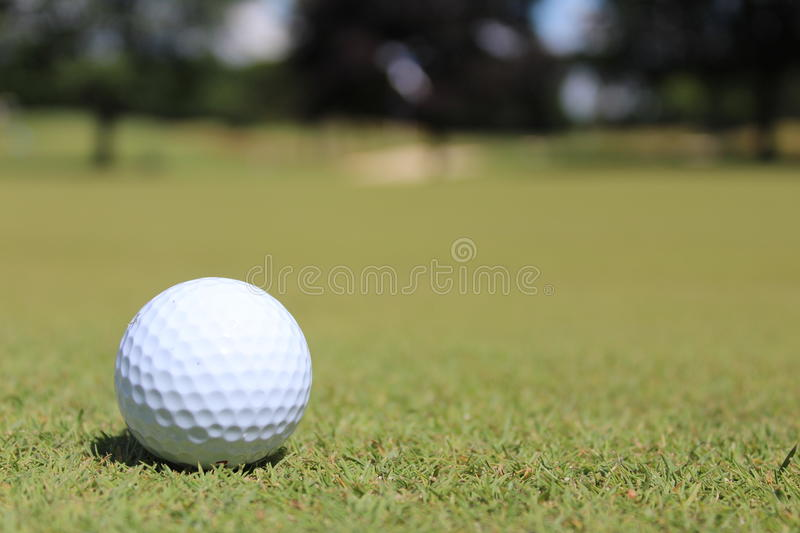 Golf ball at golfing course in Michigan royalty free stock photos