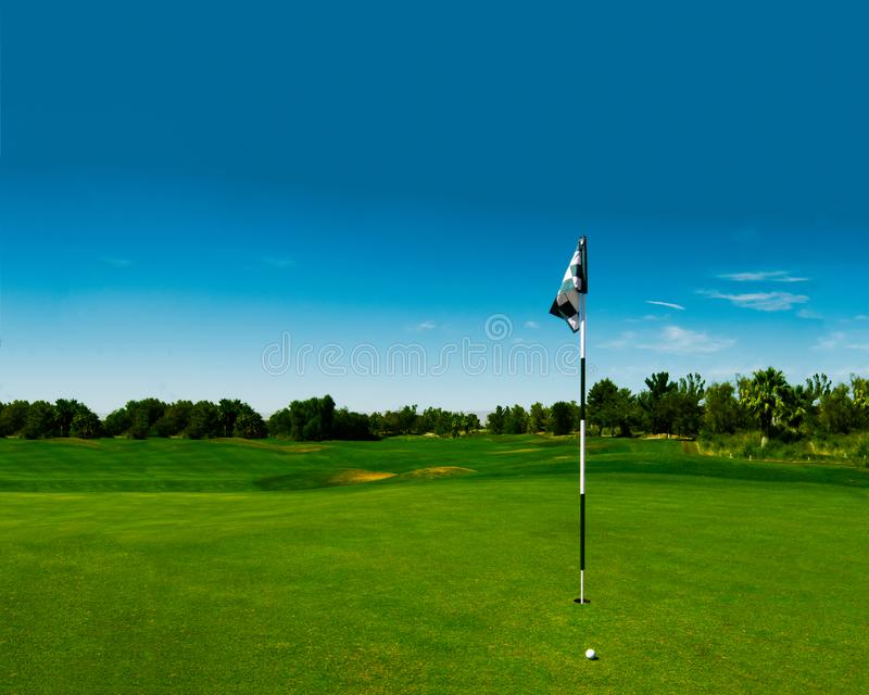 Golf course green with checkered flag royalty free stock photos