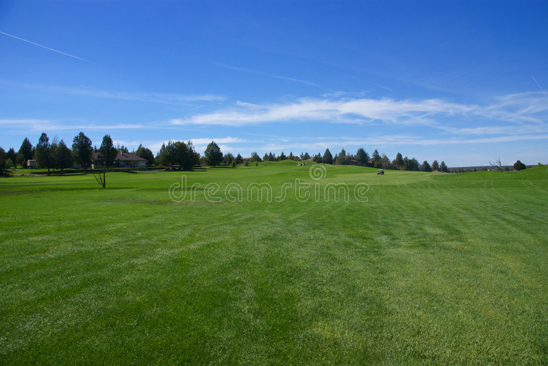 Download Golf course, green fairway stock photo. Image of green - 5312058