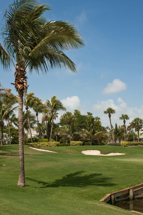 Download Golf Course Green In Florida 4 Royalty Free Stock Photos - Image: 15231748
