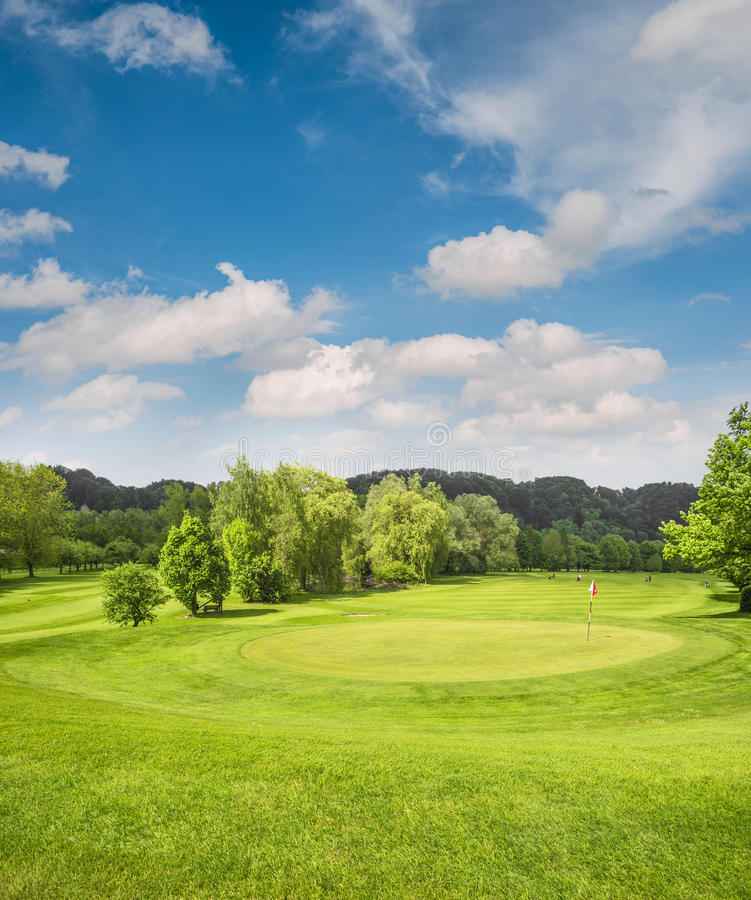 Golf course landscape. Field with green grass, trees, blue sky royalty free stock images